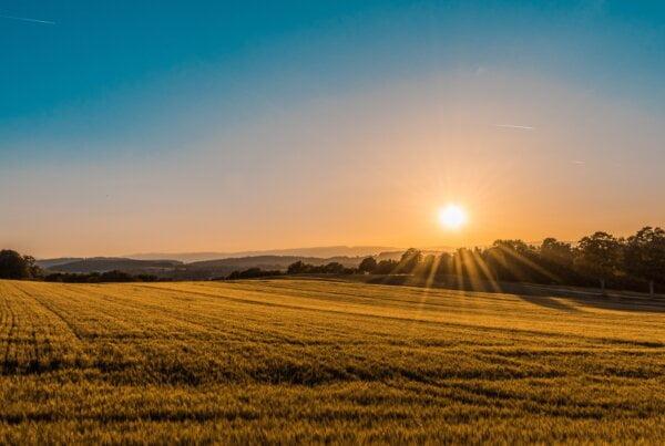 tikslusis ūkininkavimas žemės ūkio naujienos
