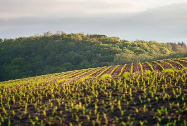 autonominė žemės ūkio technika